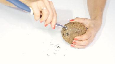 Photo of چگونه میتوان پوست نارگیل را به راحتی جدا کرد؟