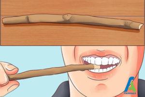 1 استفاده چوب مسواک