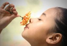 Photo of چگونه بو های مختلف بر سطح هورمون ها اثر می گذارد؟