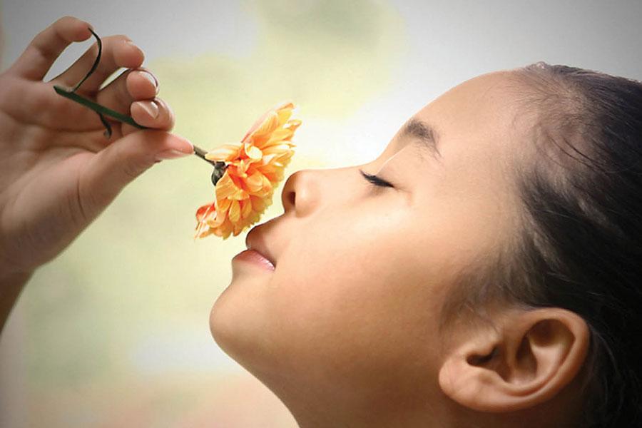1 تاثیر انواع بو در سطح هورمون