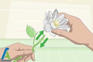 1 رنگ کردن گل ابریشمی