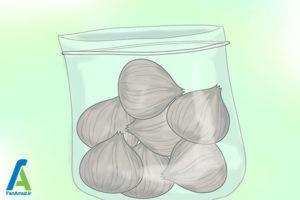 1 پرورش گل گلایول