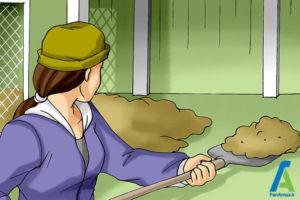 1 جلوگیری از بروز بیماری مرغ ها