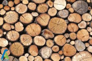 1 معرفی انواع چوبی که نباید بسوزانیم