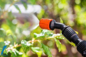 1 دلایل خطرناک بودن سرکه برای گیاهان