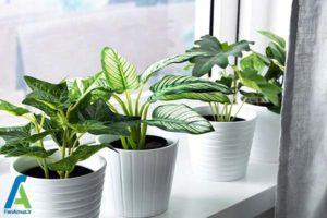 1 راهنمای انتخاب و خرید گل های مصنوعی