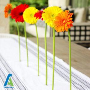 6 ساخت مگنت با گل های طبیعی