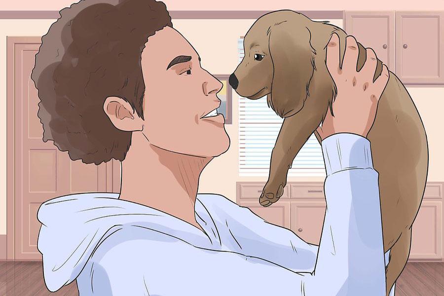 9 تربیت و نگهداری از سگ کوکر اسپانیل