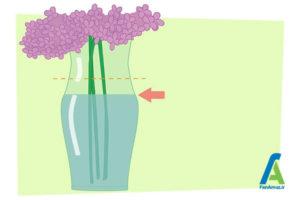 8 خشک کردن گل ادریسی