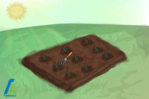 11 پرورش گل گلایول