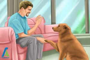 7 لیس زدن سگ به انسان