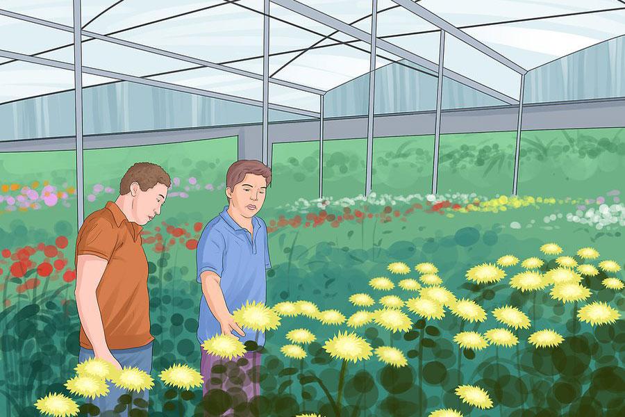 6 راه اندازی فروشگاه گل و گیاه
