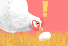 Photo of چگونه از خوردن تخم مرغ ها توسط مرغ ها جلوگیری کنیم؟