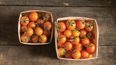 Photo of چگونه اسید موجود در گوجه فرنگی را کاهش دهیم؟
