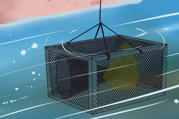 11 ساخت تور ماهیگیری