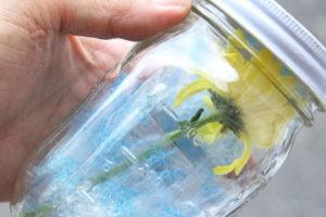 8 خشک کردن گل ها