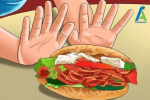 4 تهیه برنامه رژیم غذایی سالم