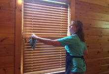 Photo of چگونه پرده کرکره های چوبی را تمیز کنیم؟
