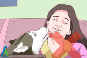 9 درمان و پیشگیری از عفونت کرم قلابدار