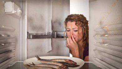 Photo of چگونگی از بین بردن بوی بد ماهی از یخچال و فریزر