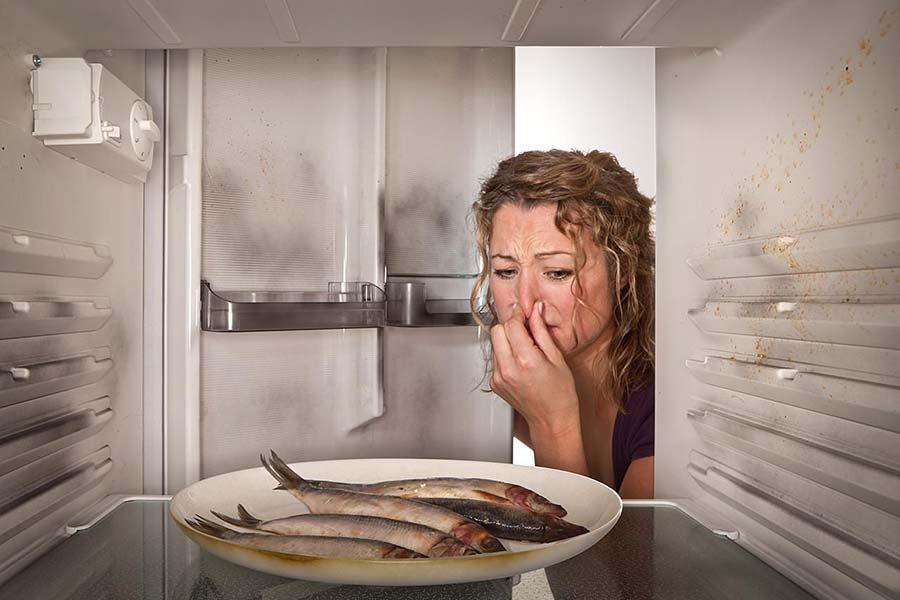 8 رفع بوی بد ماهی از یخچال