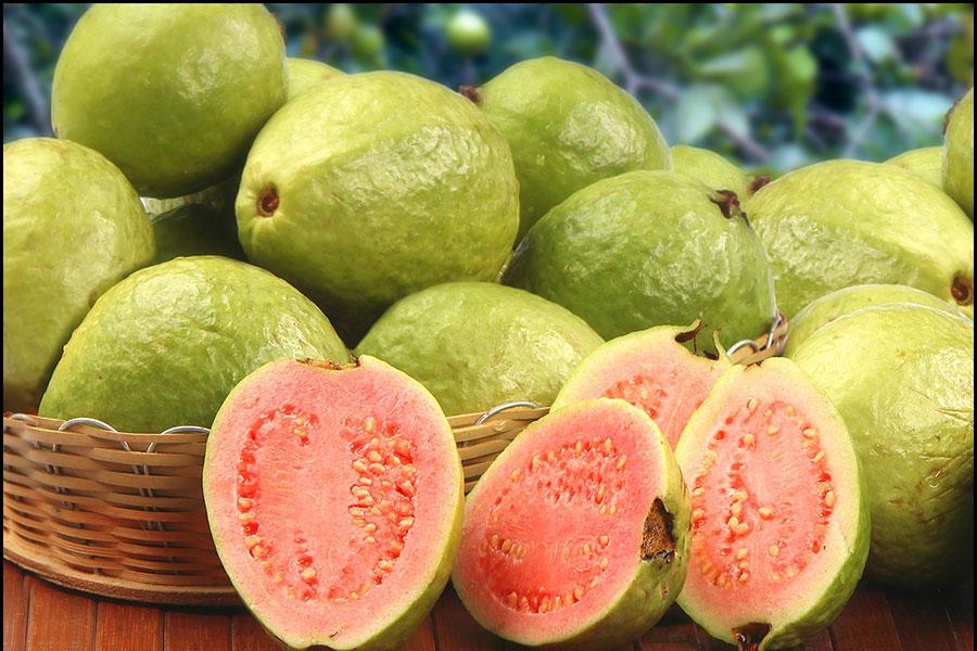 11 نحوه مصرف میوه گواوا