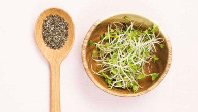 Photo of چگونه از دانه های گیاه چیا استفاده کنیم؟