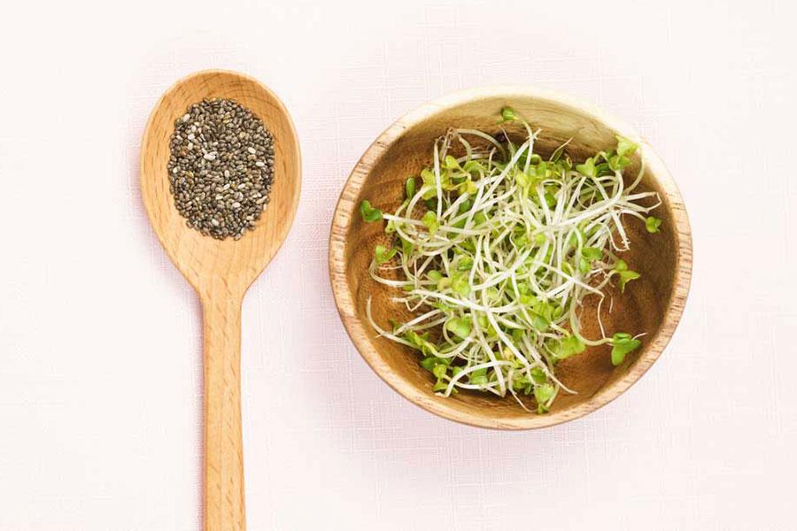 11 روش های استفاده از دانه چیا