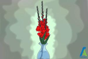 18 پرورش گل گلایول