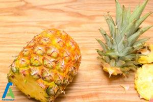 1 اصول خشک کردن آناناس