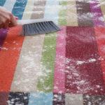 1 رفع لکه روی فرش با شوینده ارگانیک