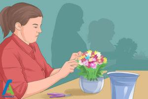 1 راه اندازی فروشگاه گل و گیاه
