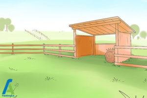 1 نحوه نگهداری از اسب مینیاتوری