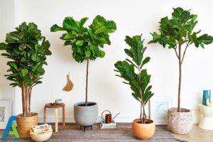 2 راهنمای انتخاب و خرید گل های مصنوعی