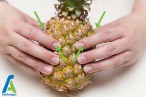 2 نحوه انتخاب و نگهداری طولانی آناناس