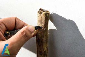2 طرز ساخت چوب دستی پیاده روی