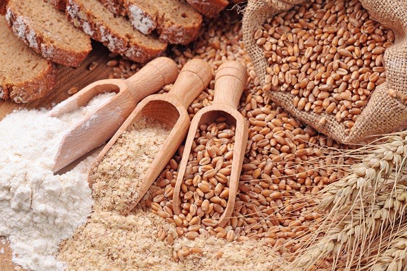 2 آنتی نوترینت Anti Nutrients موجود در غلات