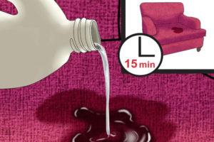 3 پاک کردن ادرار حیوانات از مبل