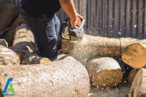3 معرفی انواع چوبی که نباید بسوزانیم
