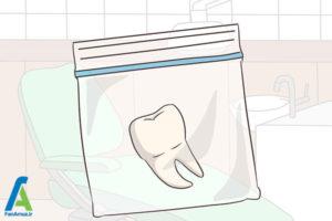 1 نگهداری از دندان کشیده شده