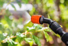 Photo of چرا استفاده از سرکه برای آفت کشی گیاهان خطرناک است؟