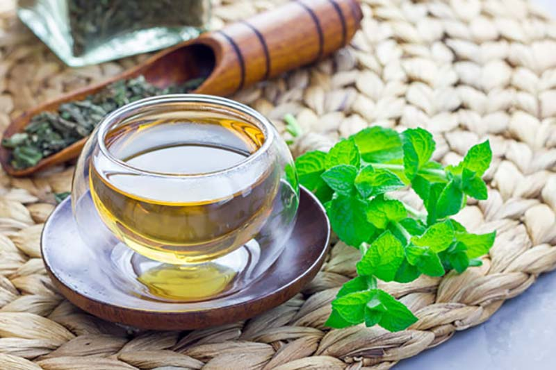 3 موارد منع مصرف دمنوش و چای نعناع
