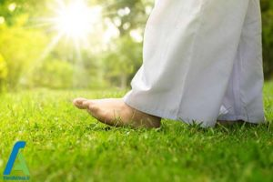 3 زمان و شرایط مناسب انجام تمرینات یوگا