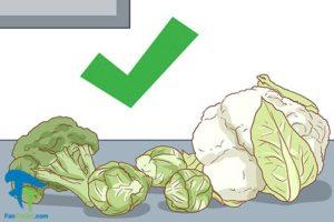3 روش های خارج کردن کافئین از بدن
