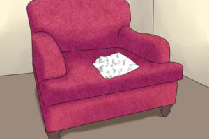 4 پاک کردن ادرار حیوانات از مبل