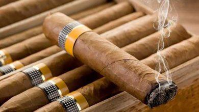 Photo of چگونه از سیگار برگ نگهداری کنیم تا خشک نشود؟