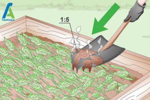 4 تقویت خاک یا کمپوست