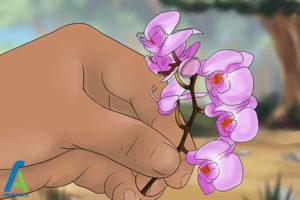 4 شینیون مو با گل طبیعی