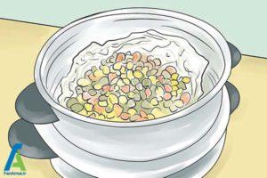 4 مراقبت تغذیه ای از جداکننده ارتودنسی