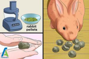 4 تهیه غذای مناسب خرگوش خانگی